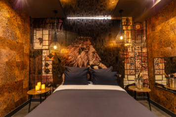 Safari Lovehotel decor afrique lion