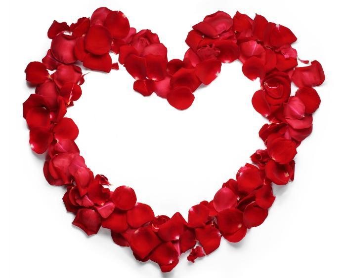 pétales de roses pour une soirée romantique